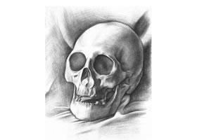 石膏头骨素描画法