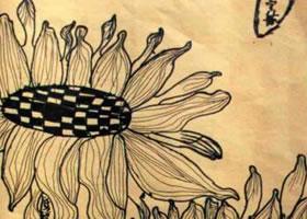 向日葵线描画法步骤教学