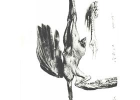 门采尔《挂在墙上的火鸡》素描作品高清大图欣赏