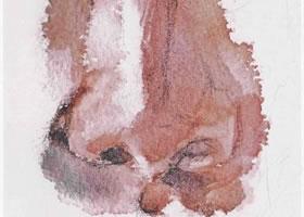 人物正面鼻子水彩画法