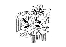 睡莲装饰画图片
