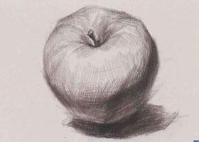 苹果素描(三)