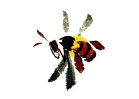 蜜蜂的写意画法(一)