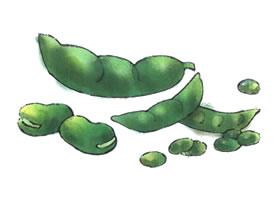 豆子儿童水彩画法步骤图示