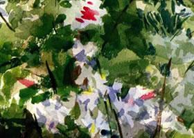 花卉水彩画的表现方法