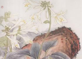 玉簪花的工笔画法步骤(二)