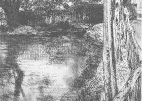 [德]阿道夫•门采尔《池塘边的树木》素描作品欣赏