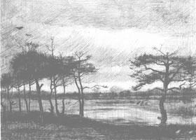 梵高《水塘旁的松树》经典景物素描