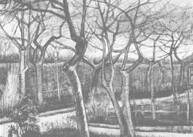 梵高《牧师住宅花园》经典景物素描