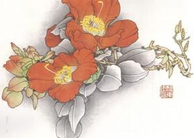 重彩《茶花》上色画法