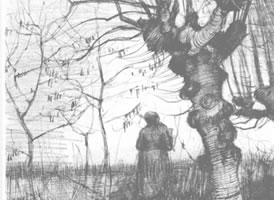 梵高《桦树林》经典景物素描