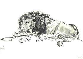 伦勃朗《休息的狮子》经典素描