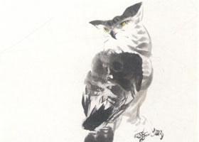 猫头鹰的写意画法