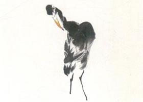 鹭鸶的写意画法