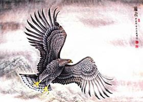 猛禽老鹰《腾飞》工笔画作品欣赏