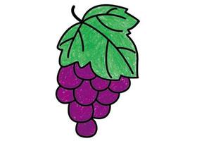 紫葡萄简笔画