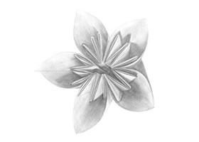 花卉折纸铅笔素描