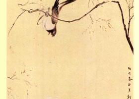 清代•华喦《海棠禽兔图》名画赏析