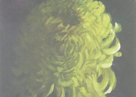 单朵菊花水粉画法