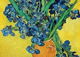 梵高《鸢尾花》布面油画欣赏