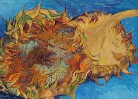 梵高《两朵剪下的向日葵》布面油画欣赏