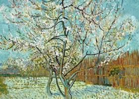 梵高《盛开的桃花》布面油画欣赏