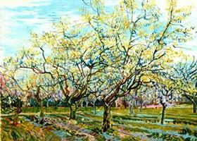 梵高《白色果园》面布油画欣赏